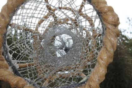 TaiTapu closeup